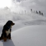 Toby keeping a close eye on the snow guns